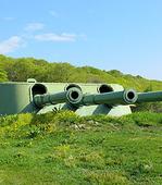 Остров Русский + музей «Ворошиловская батарея»