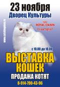 """Выставка кошек """"Осенний Листопад"""""""