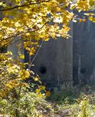 """Уникальный памятник: """"Владивостокская крепость"""""""