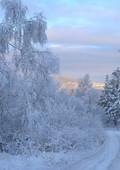 Новогодняя сказка в Шмаковке