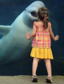 Проект «Мы – дети китов»