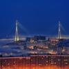 Вид на Золотой мост — newsvl.ru