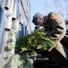 Гирлянду из еловых веток возложили к 4-метровой стене памятника